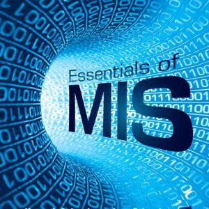 Test Bank (Complete Download) for   Essentials of MIS