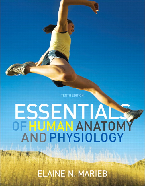 Test Bank (Complete Download) for   Essentials of Human Anatomy and Physiology