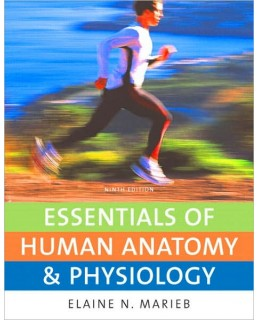 Test Bank (Complete Download) for  Essentials of Human Anatomy & Physiology